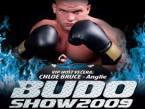 budoshow2009.jpg